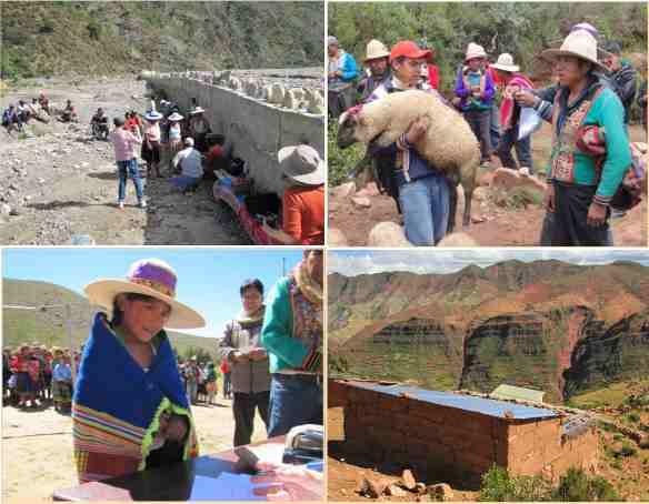 Projets menés au Pérou et en Bolivie
